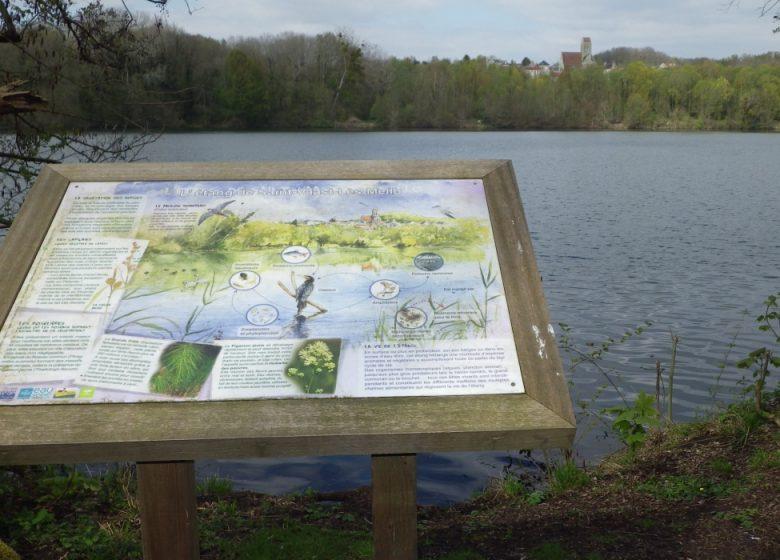 Marais de Chantraine - Copyright : Véronique MARTY - Oise Tourisme